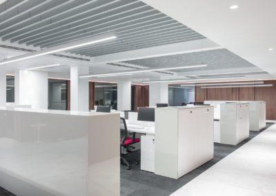 8 office, pool, laca, workplace, puestos de trabajo